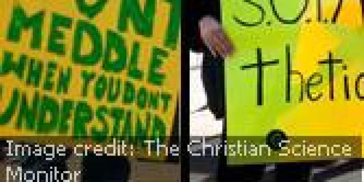 The SOPA & PIPA Shall Go To Jail